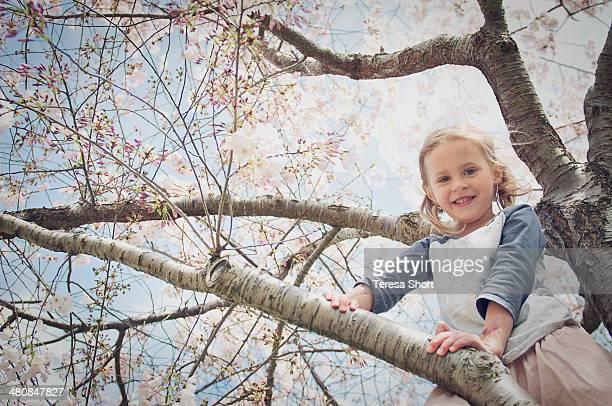 Girl Climbing in Blossom Tree