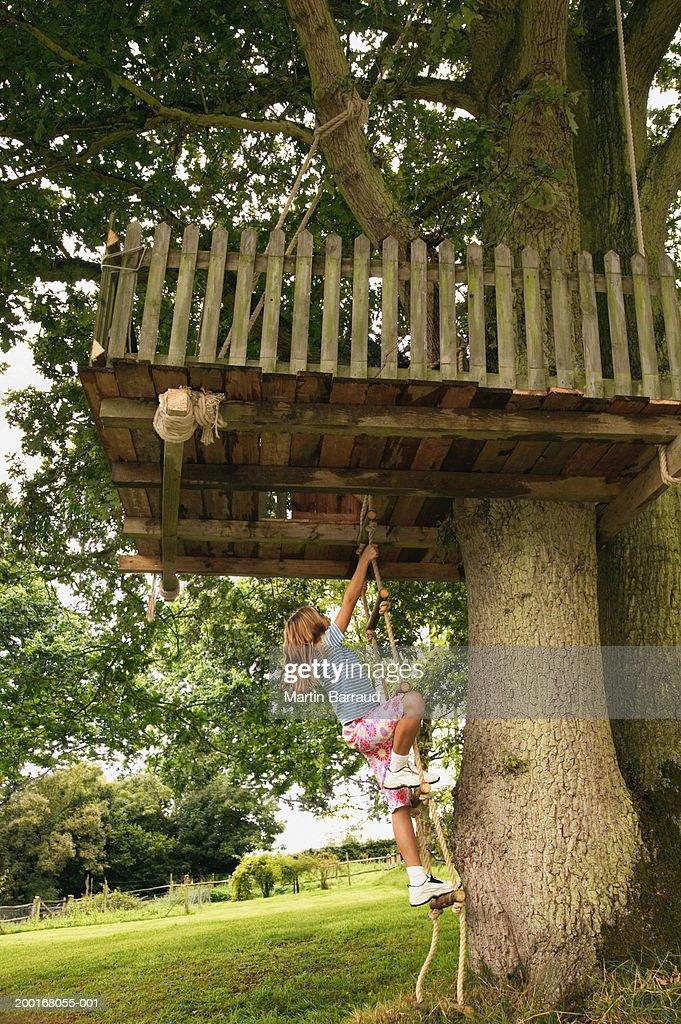Girl (9-11) climbing treehouse ladder : Stock Photo
