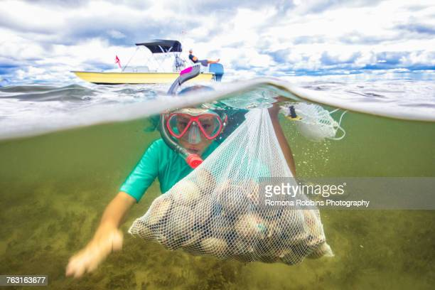 Girl collecting scallops in grass meadow underwater