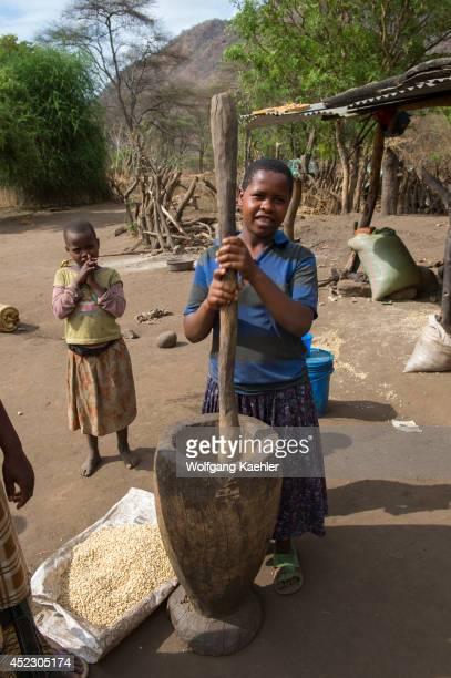 Girl crushing corn kernels in front of their hut near Lake Manyara in Tanzania