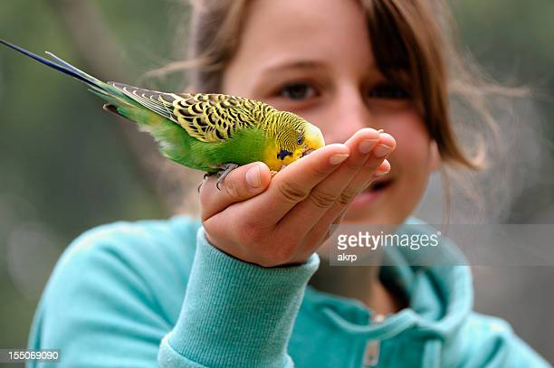 A girl cupping a budgie in her hands