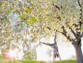 Girl doing cartwheels under flowering tree