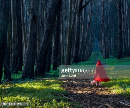 Girl (4-5) dressed as little red riding hood in forest, rear view