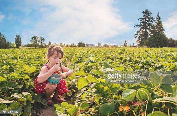 Girl eating a strawberry in strawberry field