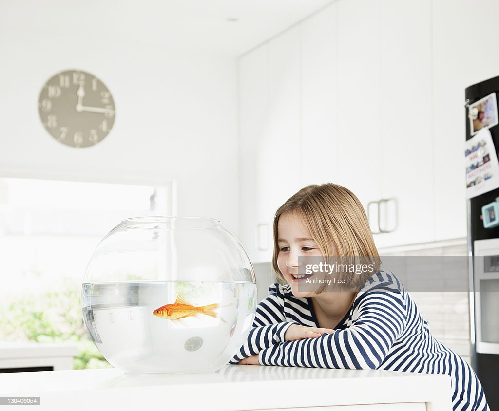 Girl examining goldfish in bowl : Stock Photo