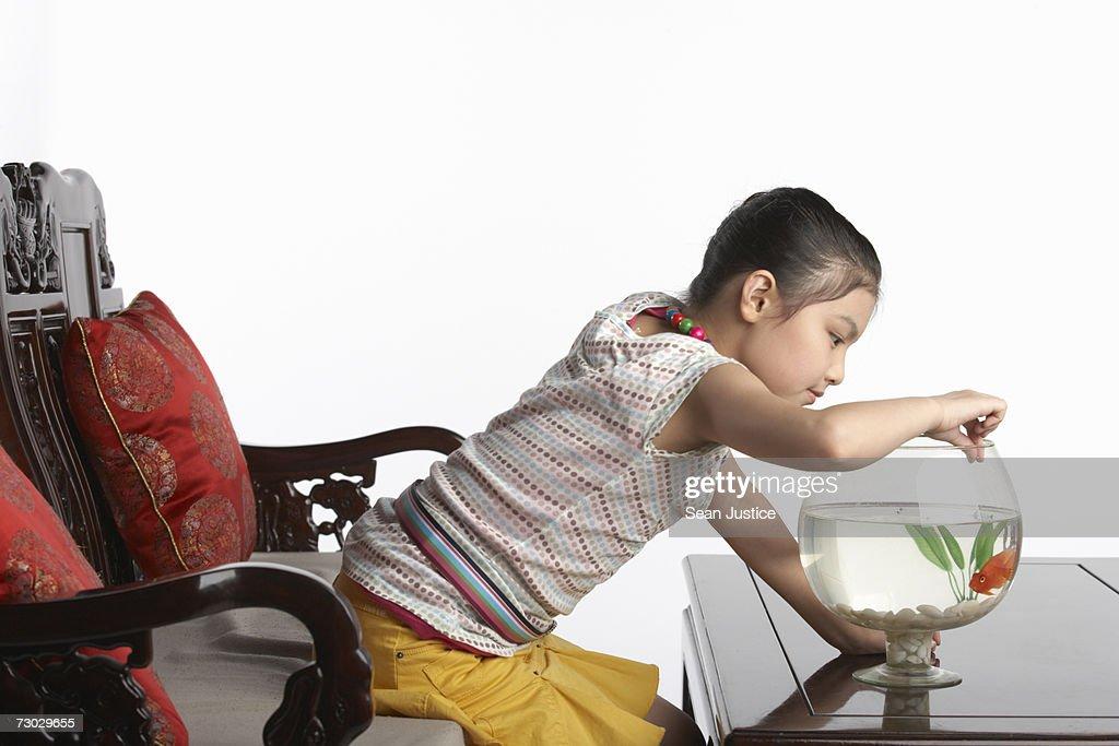 Girl (6-8) feeding goldfish : Stock Photo
