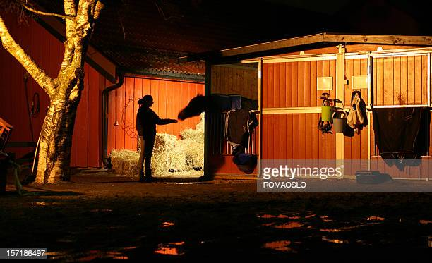 Girl feeding her horse at night