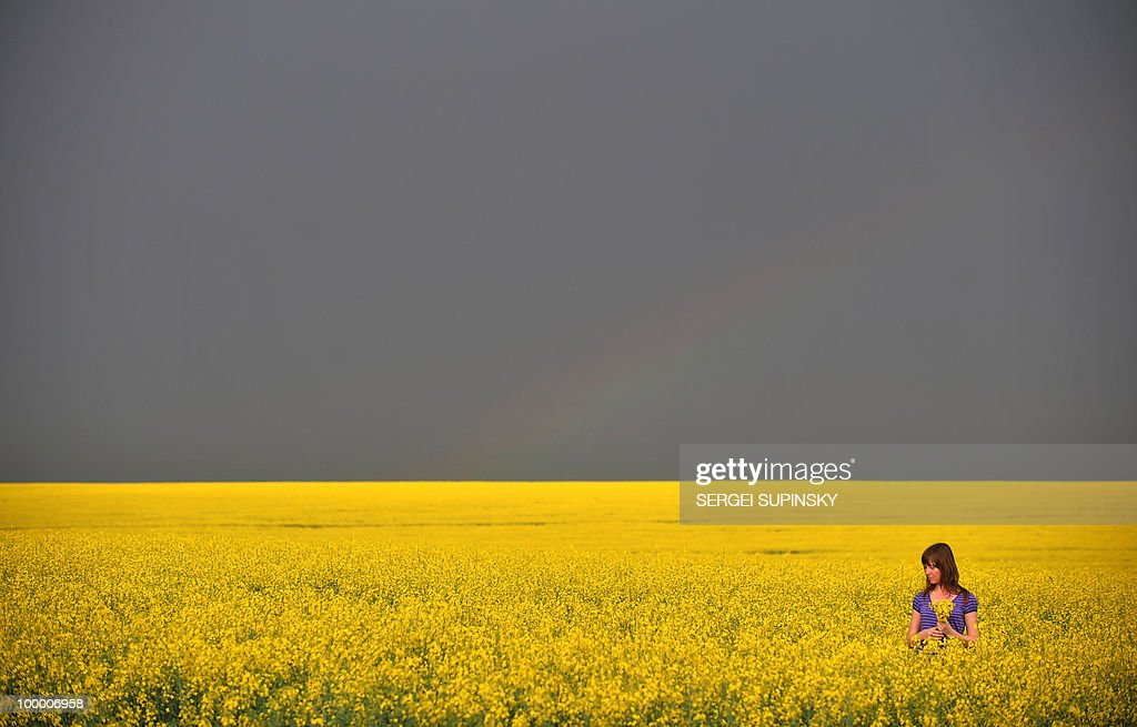 A girl gathers flowers of rapeseed (brassica napus) in a field some 300 km from Kiev prior to heavy rain on May 10, 2010.