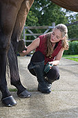 Girl grooming horse, outdoors