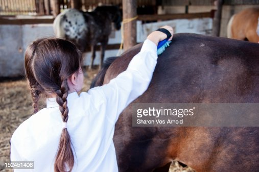 Girl grooming pony in barn : Stock Photo