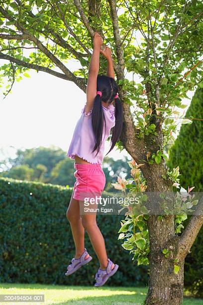 Girl (4-6) hanging from tree branch in garden, rear view
