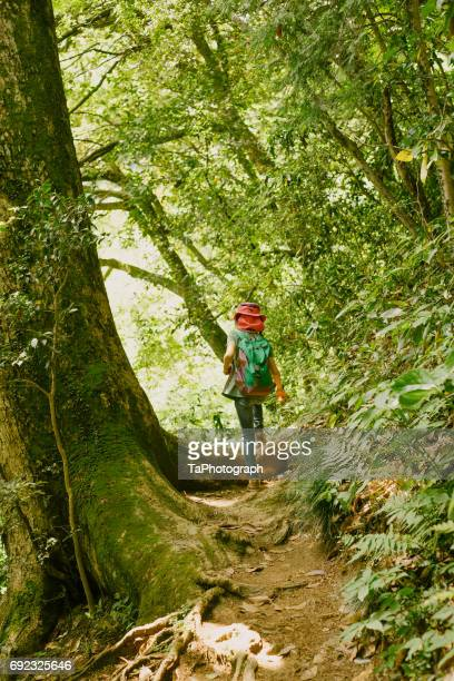 Girl hiking in the mountain trail