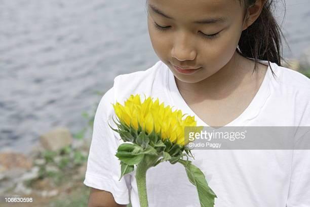 Girl holding a sunflower