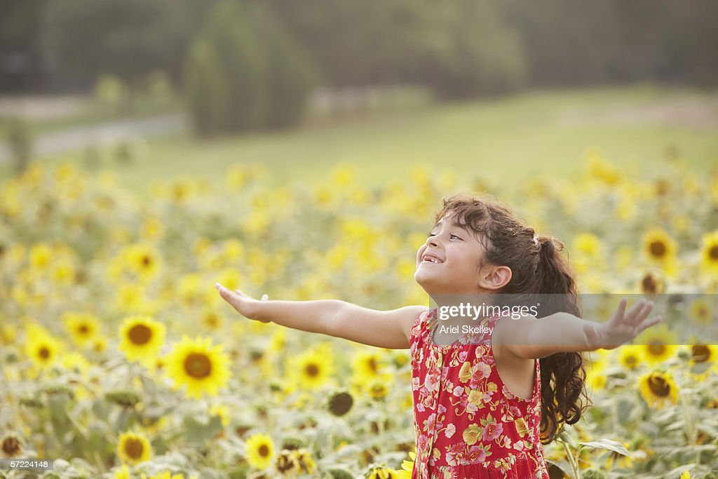 Girl holding arms out in sunflower field : Stock Photo