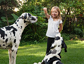 Girl holding biscuit for dogs