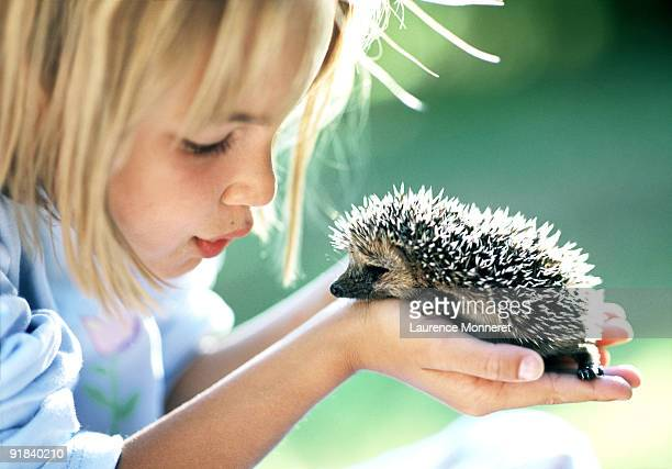 Girl holding hedgehog
