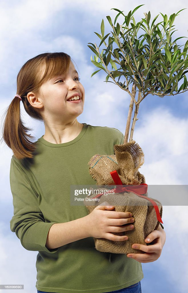 Girl holding present of olive tree : Stock Photo