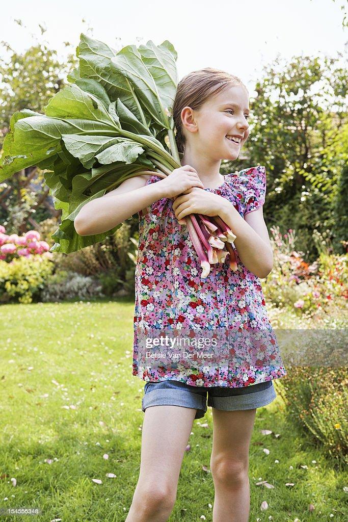 Girl holding rubarb stalks in garden. : Stock Photo