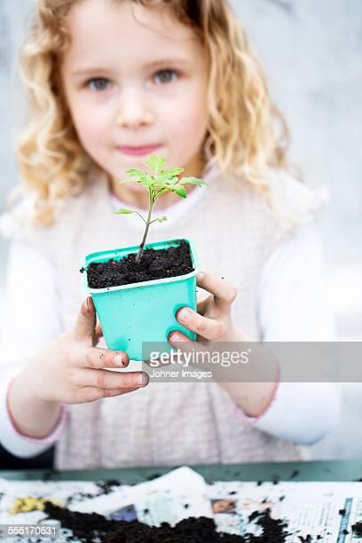 Girl holding seedling in pot