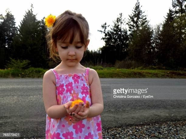 Girl Holding Yellow Flower While Standing At Roadside
