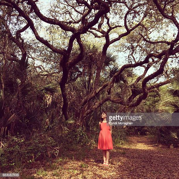 Girl in a Florida Forest