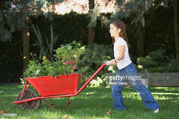 Girl (6-7) in garden, pushing wheelbarrow with flowers, side view