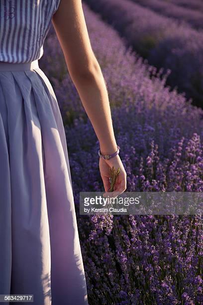Girl in lavender field, holding lavender