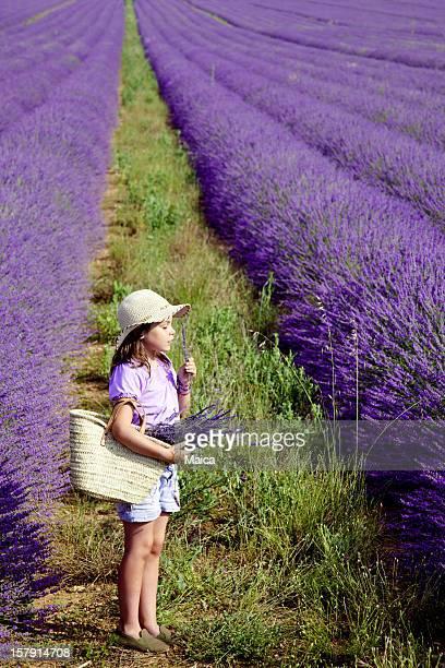 Mädchen in Lavendel Feld, riechen eine Blume