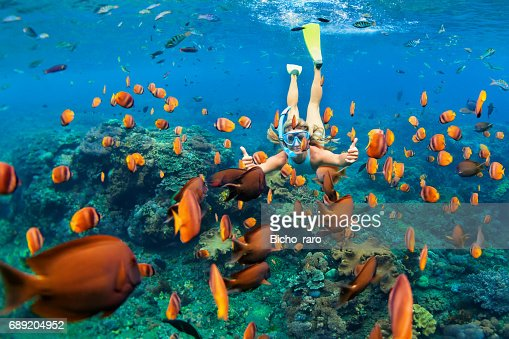 Girl in snorkeling mask dive underwater with coral reef fishes : Stock Photo