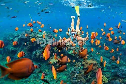 シュノーケ リング マスク ダイビング、サンゴ礁魚類と水中の女の子 : ストックフォト