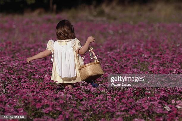 Girl (3-5) in white pinafore dress picking purple verbena, rear view