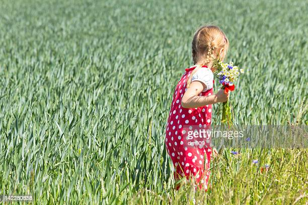 Girl is collecting wild flowers