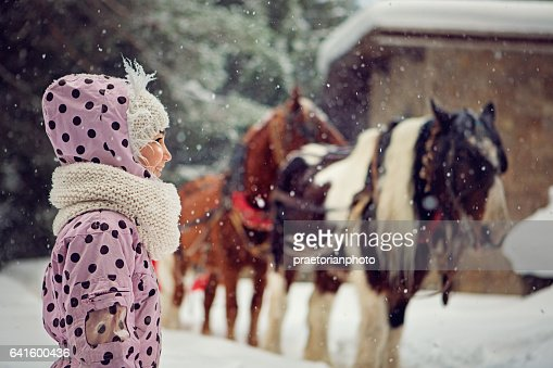 Girl is looking herd of horses in the forest