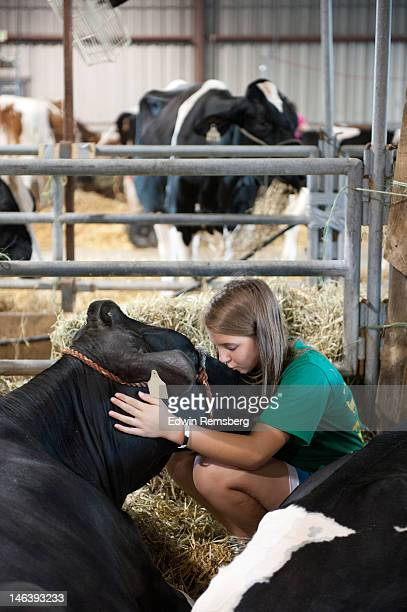girl kissing her pet cow