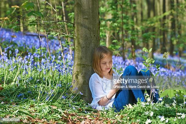 Girl leaning against tree sketching in bluebell forest, Hallerbos, Brussels, Belgium