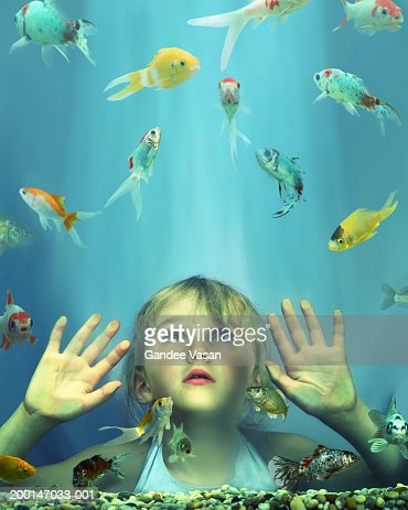 Girl (4-6) looking at fish in tank, hands pressed against glass