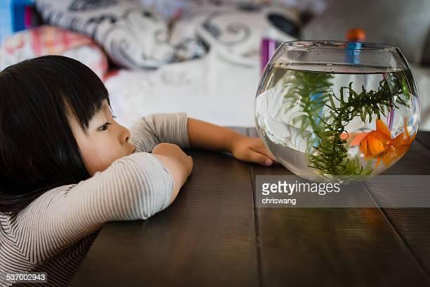 Girl looking at fishbowl