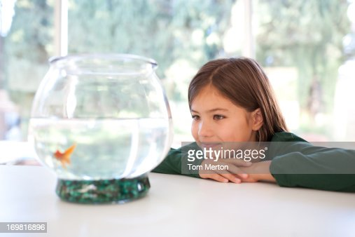 Girl looking at goldfish in bowl : Stock Photo