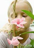 Girl looking at mandevilla bloom