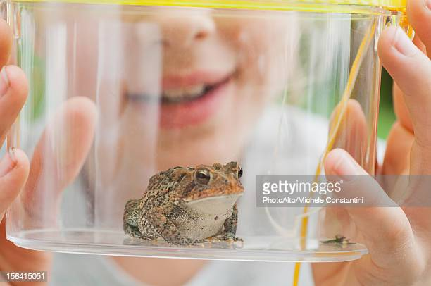 Girl looking at toad in terrarium, cropped