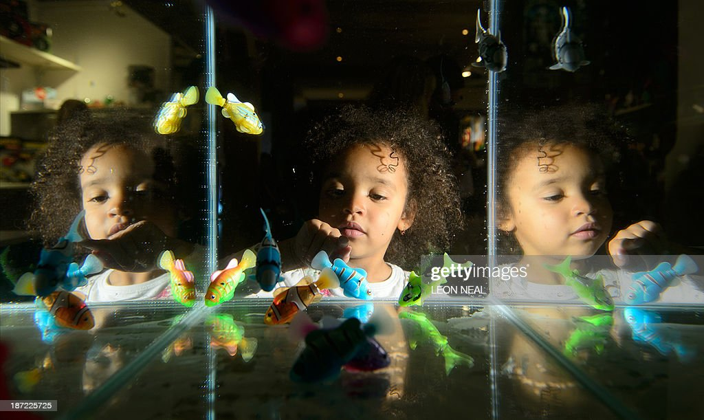 A girl looks at a tank full of toy Robofish at the Dream Toys 2013 top ten preview event in London on November 6, 2013. The event sees manufacturers of the predicted Christmas bestsellers showcase their products in the run up to the festive season. AFP PHOTO / LEON NEAL