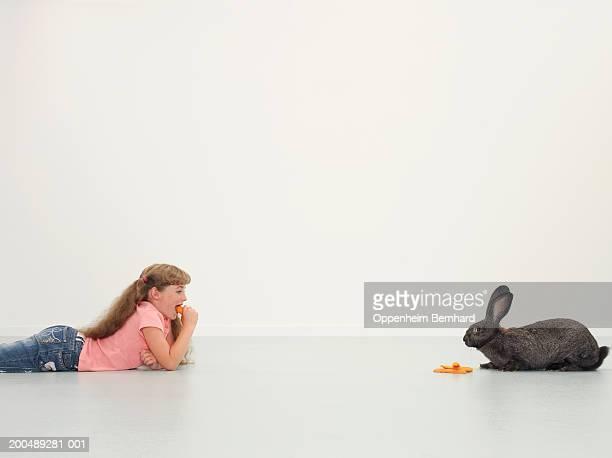 Girl (9-11) lying on floor looking at giant rabbit, eating carrot