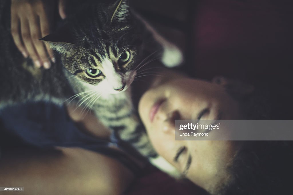 girl lying with a cat in her arms : Stock Photo