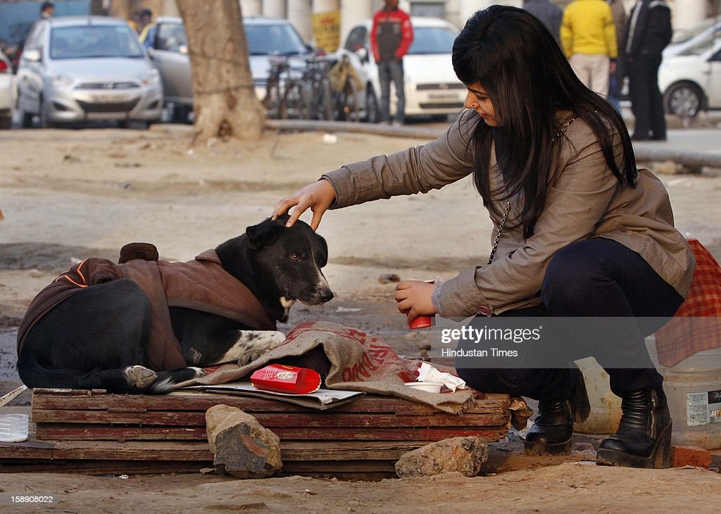 A girl offers her warm coffee to a stray dog on a cold and foggy day in Connaught Place in New Delhi on January 3, 2013 in New Delhi, India. A cold wave is sweeping across north India sending temperatures plunging. Delhi Wednesday witnessed the coldest day in the past 44 years.