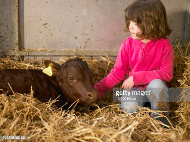 Girl (5-7) patting calf in stable
