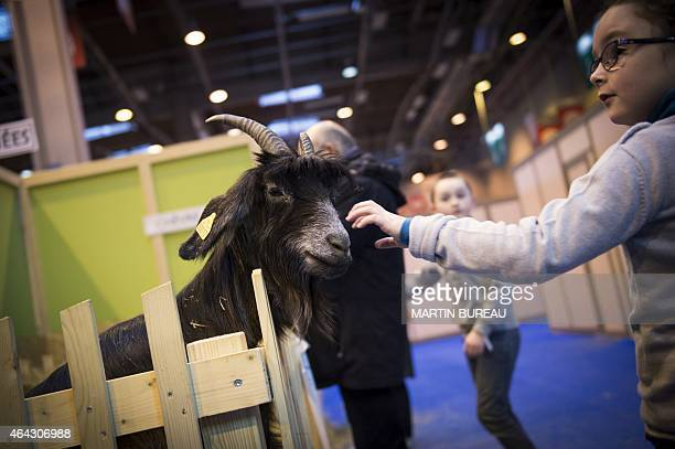 A girl pets a goat at the 2015 edition of the Paris International Agricultural Fair on February 24 2015 in Paris AFP PHOTO / MARTIN BUREAU