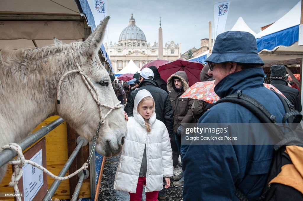 A girl pets a horse in front of the Saint Peter Basilica, during a traditional day of blessing of the animals, on January 17, 2013 in Vatican City, Vatican. Every year, during the feast of St. Anthony the Abbot, the traditional blessing of the animals is celebrated.