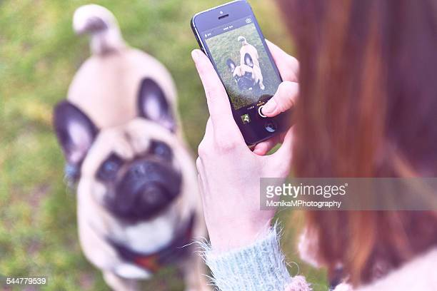 A girl photographing a dog