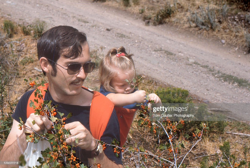 Girl picking currant berries with dad : Stock Photo
