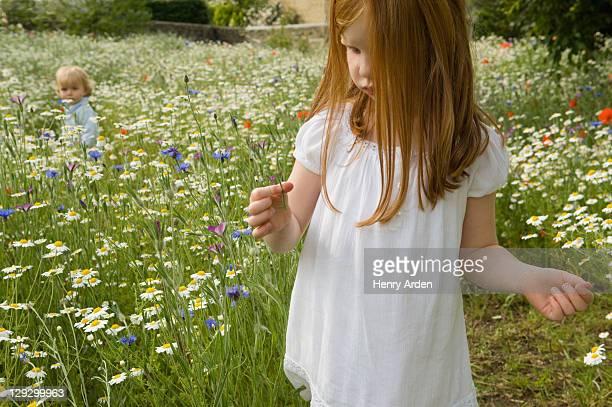 Mädchen pflücken Blumen in Feld